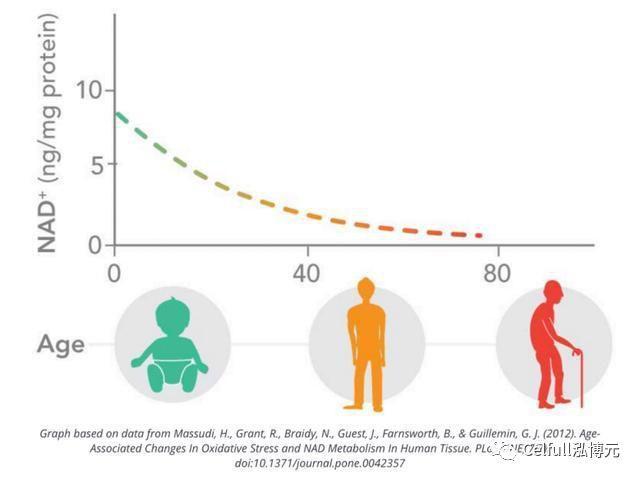 赛立复:活到100岁,如何维持不错的生活质量?