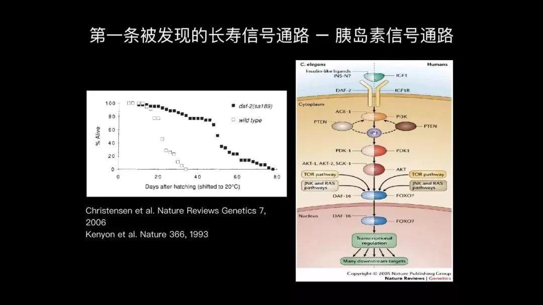 《Nature》150周年 | 盘点那些可以长寿的科技