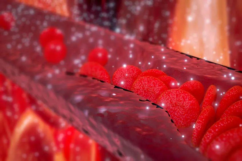 """血管健康人长寿:《CELL》发布让血管""""重返年轻""""的物质NMN"""