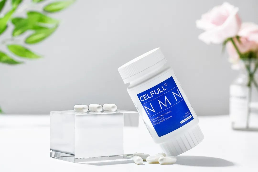 最新研究 | NMN被证实可促进神经血管再生!