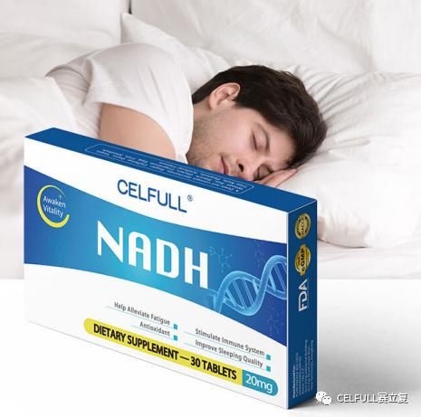 研究发现:NADH能有效调节生物钟,改善睡眠